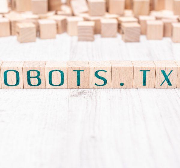 robots.txtと書かれたブロック