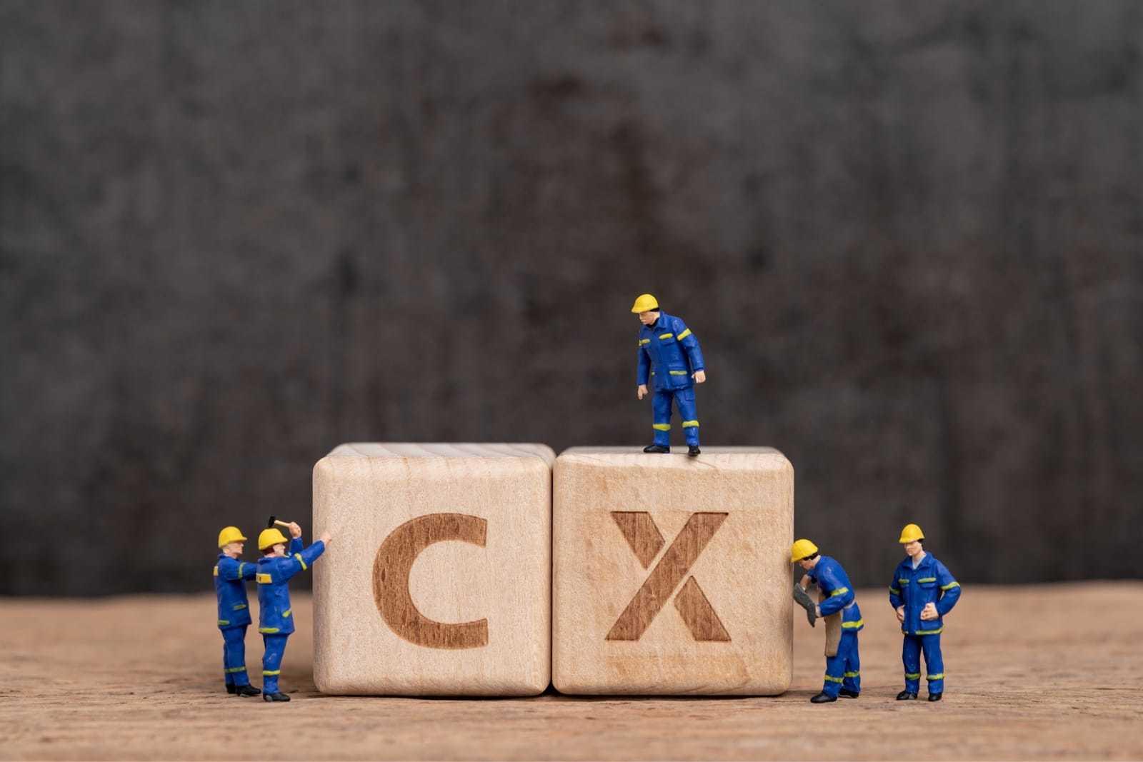 CXと書かれたブロックと人形