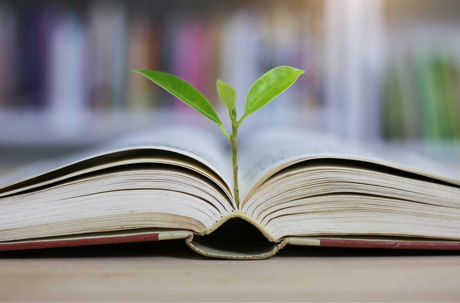 本から植物が生える