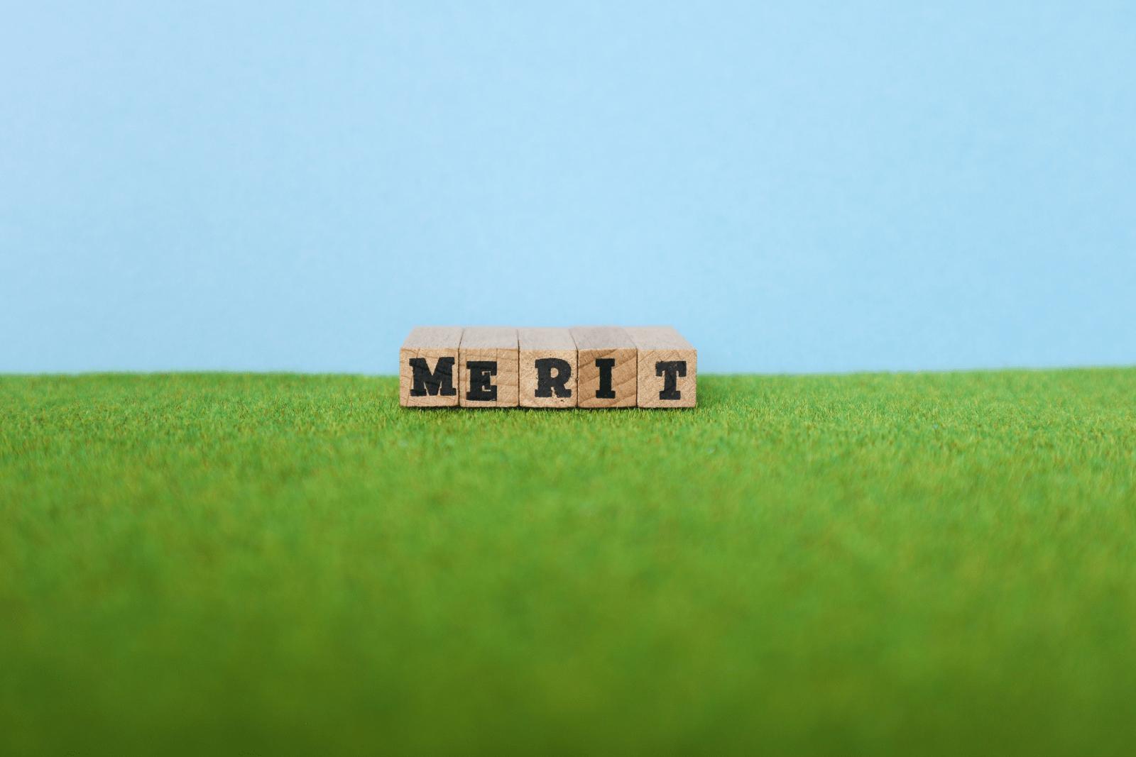 芝生の上の英語文字ブロック・MERIT