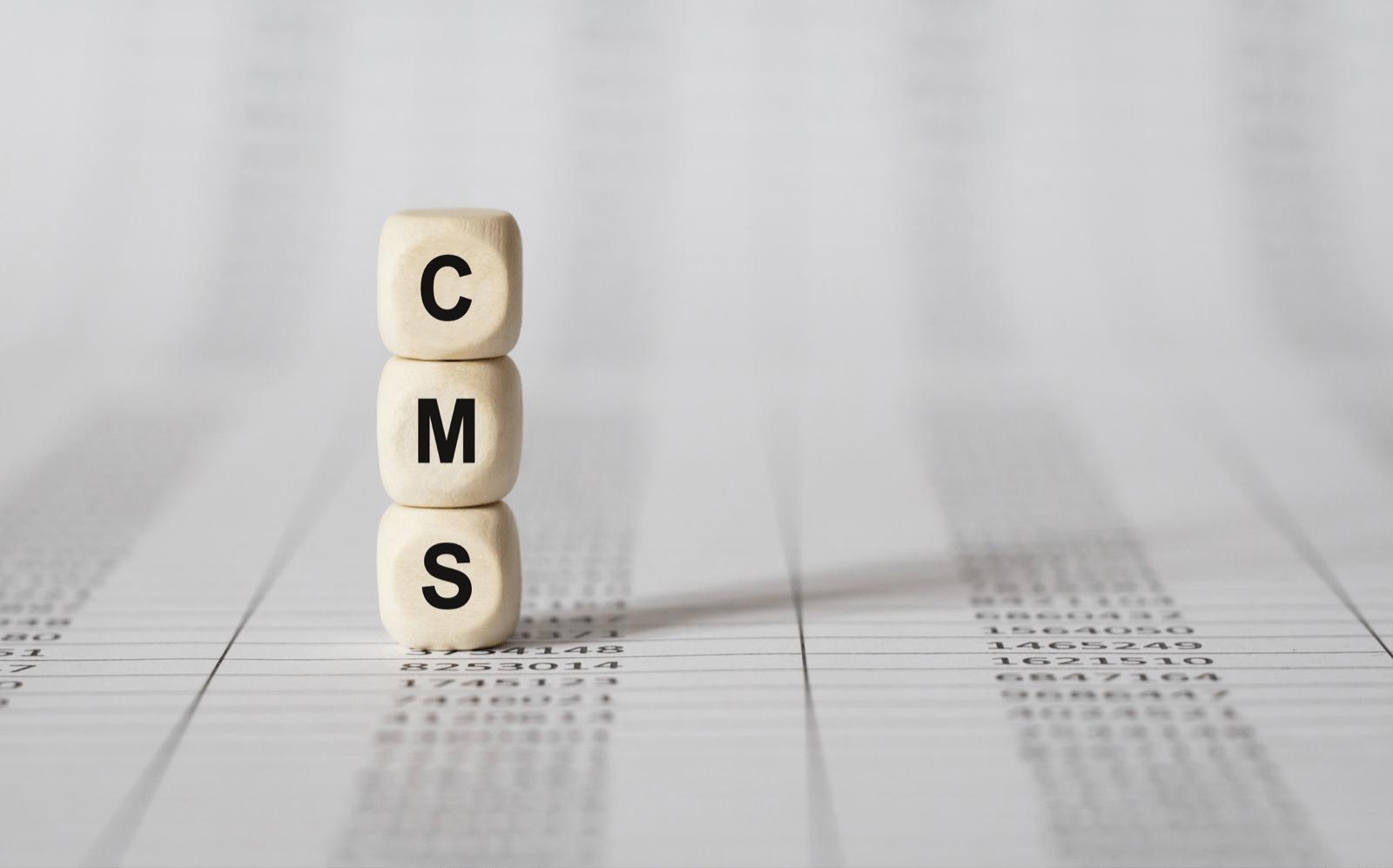 木製のブロックで作られたCMSという単語